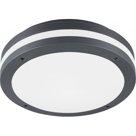 Piave 30 Led antharcite outdoor ceiling light with sensor Trio