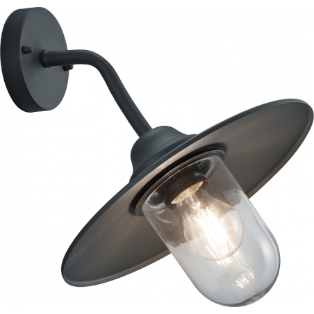 Brenta antharcite outdoor wall lamp Trio